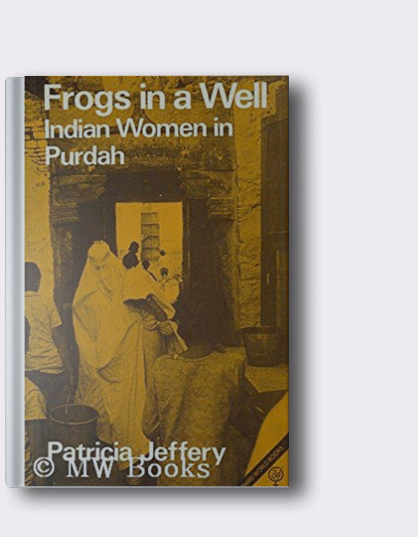 frogs in a a well - indian woman in purdah by patricia jeffery